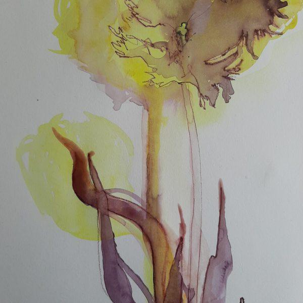 tulp tekening 20 x 30 cm